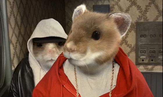 kia hamsters kia soul 2010 rapping hamsters tv recappers anonymous