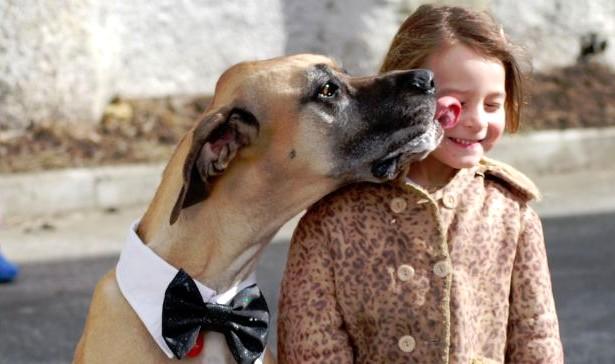 Dog licks out women