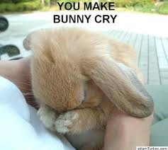 make bunny cry