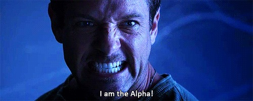 im the alpha