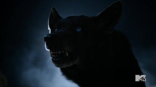 howl 2345