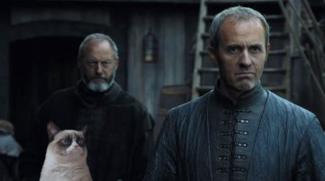 stannis and grumpy cat