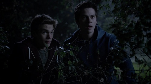 stakeout with stiles